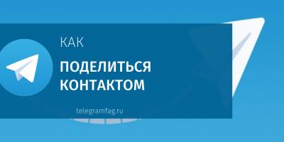 Как поделиться контактом в Телеграмме